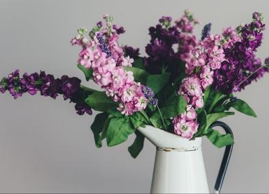 springflowersstocks